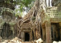 Angkor Wat – Cytadela Piękności.